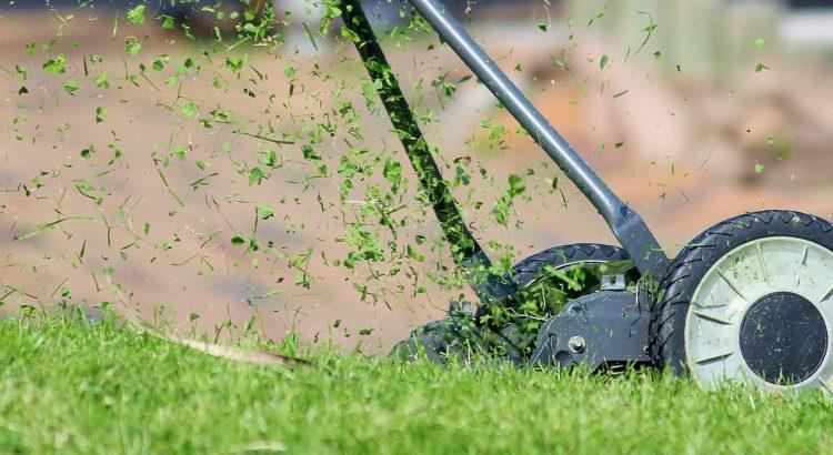 En gräsklippare klipper gräs